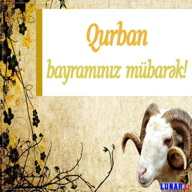 Qurban Bayrami Təbrik Yazili Səkilləri 2017 Lunar Az